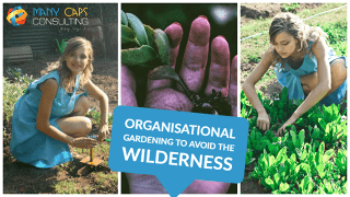 Organisational Gardening to avoid the wilderness