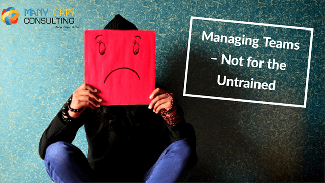 Managing-Teams--Not-for-the-Untrained---tiny