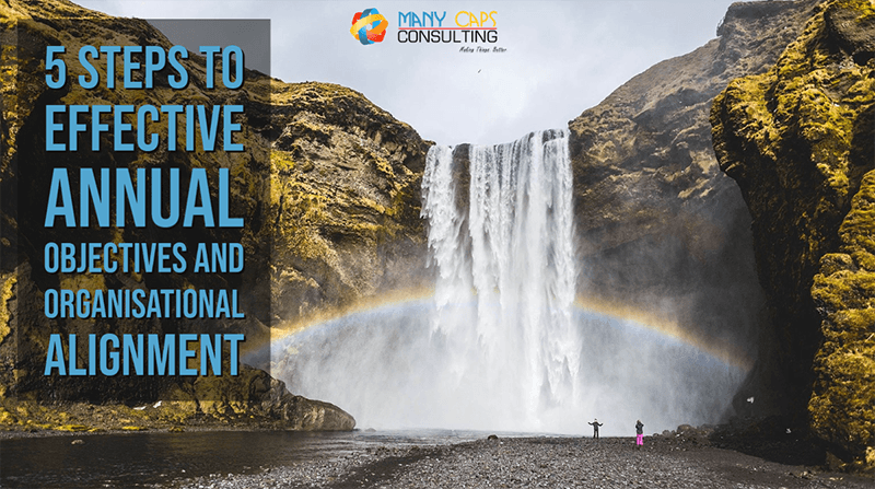 The 5 Steps to effective Annual Objectives and Organisational Alignment - think waterfalls